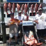 2016 snapper fishing orange beach