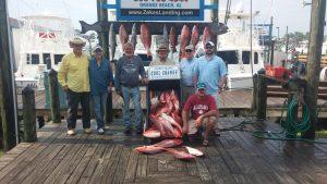 best fishing charter boats in Orange Beach, AL
