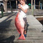 family snapper fishing in orange beach al