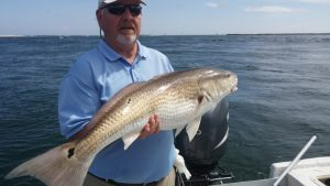 cheap fishing trips orange beach
