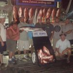 best snapper fishing charters in Orange Beach, AL